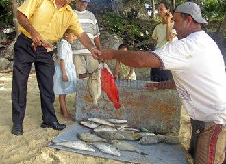 Fischer an der Beau Vallon Bay