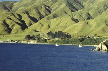 Neuseeland  Suedinsel  die Marlborough Sounds
