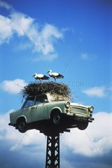 Stoerche Nest Trabbi