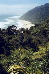 Neuseeland  Suedinsel  Kahurangi National Park  Heaphy Track  Strand bei Scotts Beach