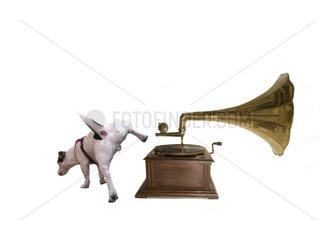 Jack Russell mit Grammophon Parodie auf His Masters Voice