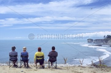 Neuseeland  Suedinsel  Westkueste  Cape Foulwind