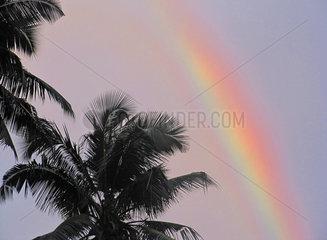 Seychellen  Regenbogen