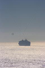 San Francisco  USA  ein Kreuzfahrtschiff verlaesst San Francisco
