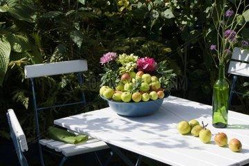 Aepfel auf einem Gartentisch