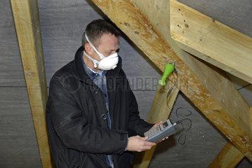Schimmel am Dachsparren