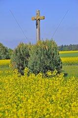 Feldkreuz mit Christusfigur  Schwaebische Alb  Baden-Wuerttemberg  Deutschland  Europa