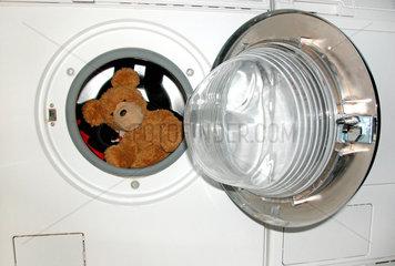 teddy in the washing machine