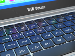 Web design development concept  Programming or SEO termnes on the laptop keyboard.