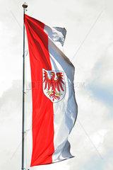 Potsdam  Deutschland  Fahne des Bundeslandes Brandenburg weht im Wind