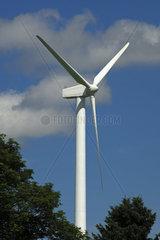 Schlanke Windturbine vor blauem Himmel  Schweiz