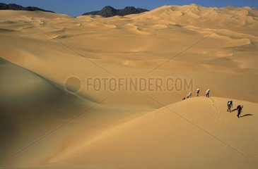 GROUPE AU MILIEU DES DUNES DE LA PINCE DE CRABE  SAHARA