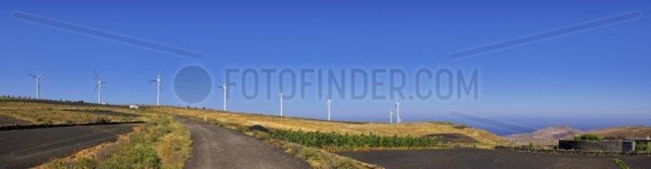 Windpark im Norden Lanzarotes  noerdlich der Ortschaft Los Valles  mit Blick auf den Atlantik.