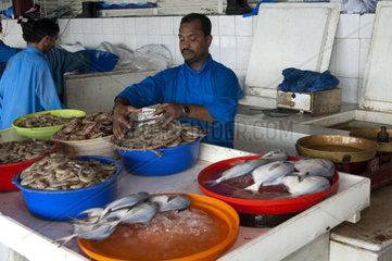 Fischhaendler mit frischem Fisch auf dem Fischmarkt in Sharjah  Vereinigte Arabische Emirate