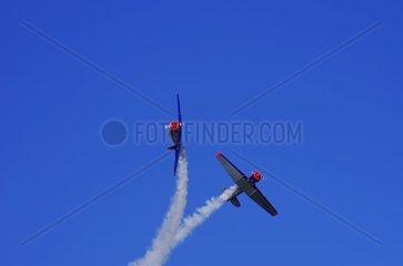 Zwei North American T 6 bei einer Kunstflugvorfuehrung auf dem Rossfeld Metzingen  08 09 2012