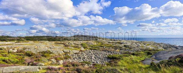 Natuerliche Kuestenlandschaft  Westkueste von Schweden auf der Halbinsel Onsala bei Kungsbacka  Provinz Halland