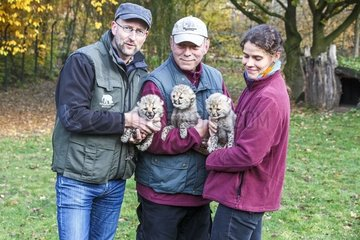 Vlnr. Zoo-Kurator Dr. Dirk Webers  Alex Dietrich und Anke Riem mit den noch namenlosen Geparden Babys