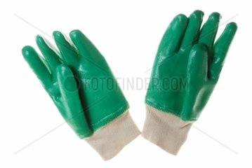 Isolated Green Protecting Garden Gloves