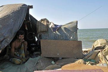 Mann in den Slums von Negombo  Sri Lanka  Ceylon  Suedasien  Asien