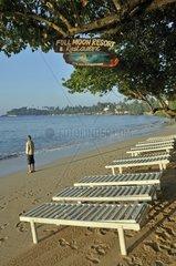 Menschenleere Strandliegen  Strand  Unawatuna  Sri Lanka  Ceylon  Suedasien  Asien