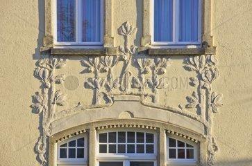 Relief mit stilisierter Pflanzenornamentik an einer Hausfassade  Dresden  Deutschland