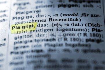 Begriff Plagiat im Woerterbuch