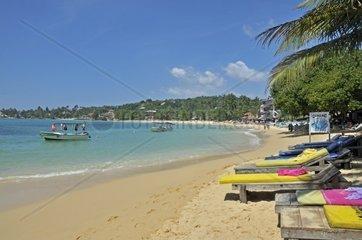 Strand  Unawatuna  Sri Lanka  Ceylon  Suedasien  Asien