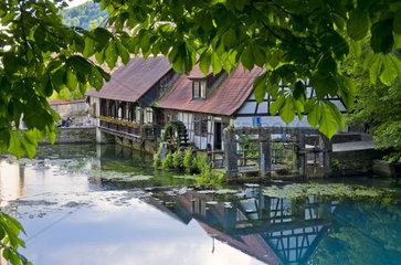Blick auf die historische Hammerschmiede am sogenannten Blautopf ueber den Quelltopf der Blau hinweg  Blaubeuren bei Ulm  Deutschland