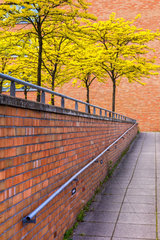 Baeume vor Backsteinmauer