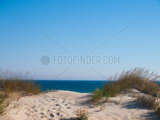 Duene am Strand von Bolonia  Tarifa  Spanien  costa de la luz