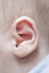 Ohr eines Saeuglings