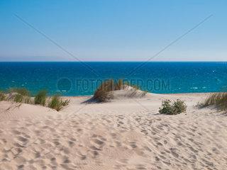 Sand-strand mit Duenen in Bolonia  Tarifa  Costa de la luz  Spanien