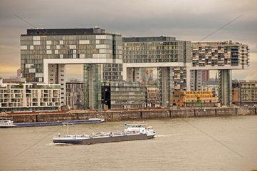 Kranhaeuser vom Deutzer Rheinufer  Rheinauhafen  Koeln  Nordrhein-Westfalen  Deutschland  Europa