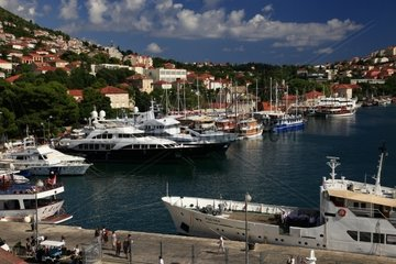 Kroatien  Sued-Dalmatien  Marina Gruz Dubrovnik