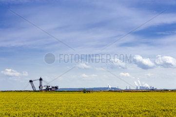 der obere Teil eines Baggers am Tagebaurand und Kohlekraftwerke am Horizont
