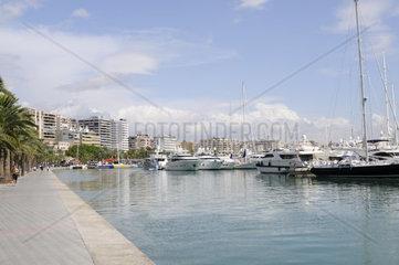 Bucht von Palma mit Yachten auf Mallorca  Spanien  Europa