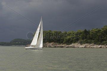 Kroatien  Sued-Dalmatien  Elaphiten-Archipel  Insel Daksa  Segelboot