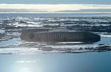 Eisberg im arktischen Meereis