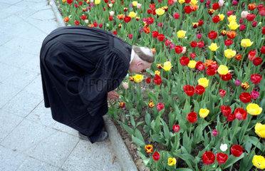 Geistlicher riecht an Blumen