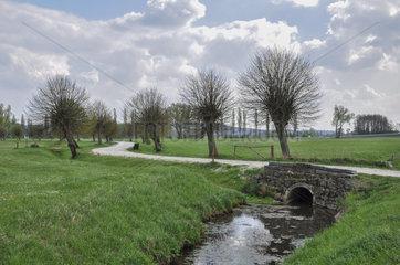 Weidenallee bei Baiersdorf  Deutschland