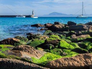 Tarifa  costa de la luz  Andalusien  Spanien  Blick vom Hafen Tarifa ueber die Strasse von Gibraltar nach Marokko