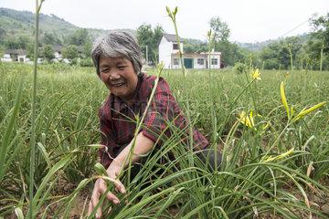 CHINA-SHAANXI-POVERTY ALLEVIATION-EFFORTS (CN)