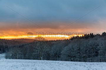 winterlicher Harz im Sonnenuntergang