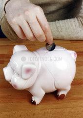 Knopf in Sparschwein   Geld
