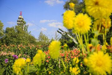 Essen  Deutschland  Ruhrgebiet  Grugapark