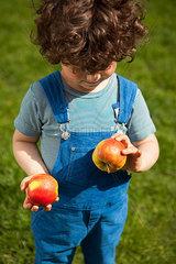 Welchen Apfel esse ich zuerst?