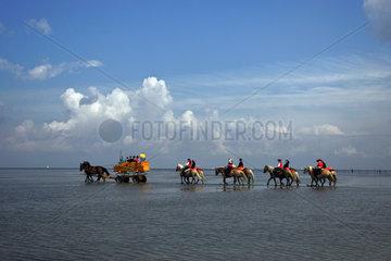 Cuxhaven  Deutschland  Reiter und Kutsche durchqueren das Wattenmeer