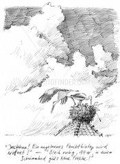 Feuchtbiotop Storch Tiere Umweltschutz