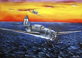 Kampfflugzeug Flugzeug