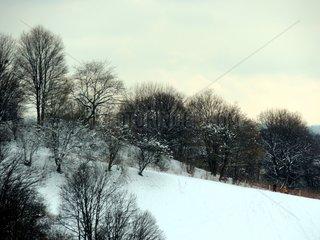 Muenchen Luitpoldpark Schnee